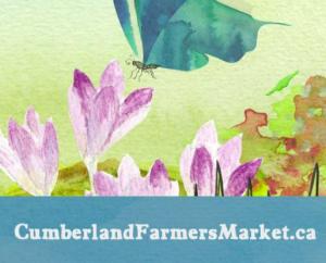 Cumberland Spring Market @ Ahmadiyya Community Centre | Ottawa | Ontario | Canada